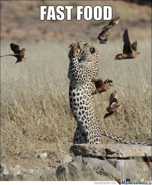 36 best images about Tumblr Memes on Pinterest | Best ...