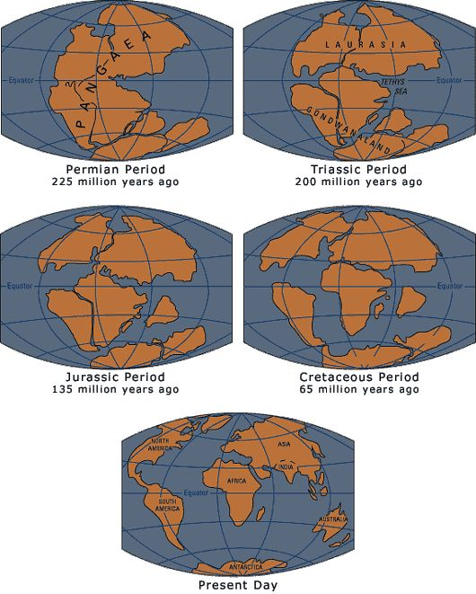 1000+ images about Science: Pangea on Pinterest | Posts ...