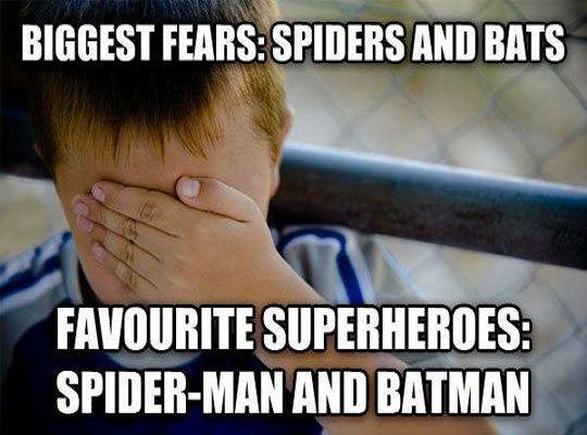 17 Best ideas about Funny Batman Memes on Pinterest ...