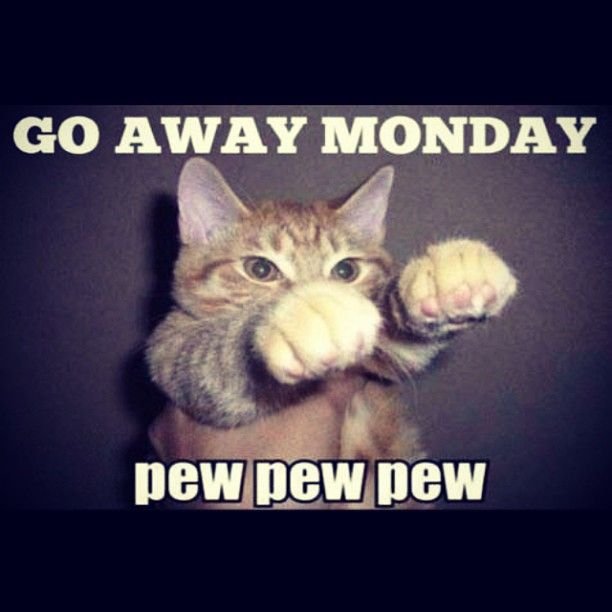 12 best images about Oh no, Its Monday! on Pinterest