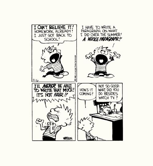 Calvin And Hobbes Quotes About School. QuotesGram