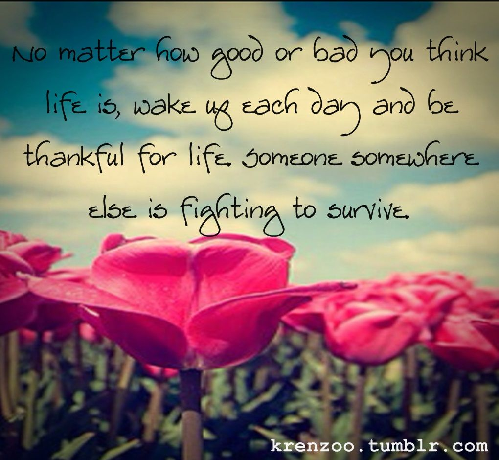 inspirational quotes with butterflys | ... Quotes Tumblr ...