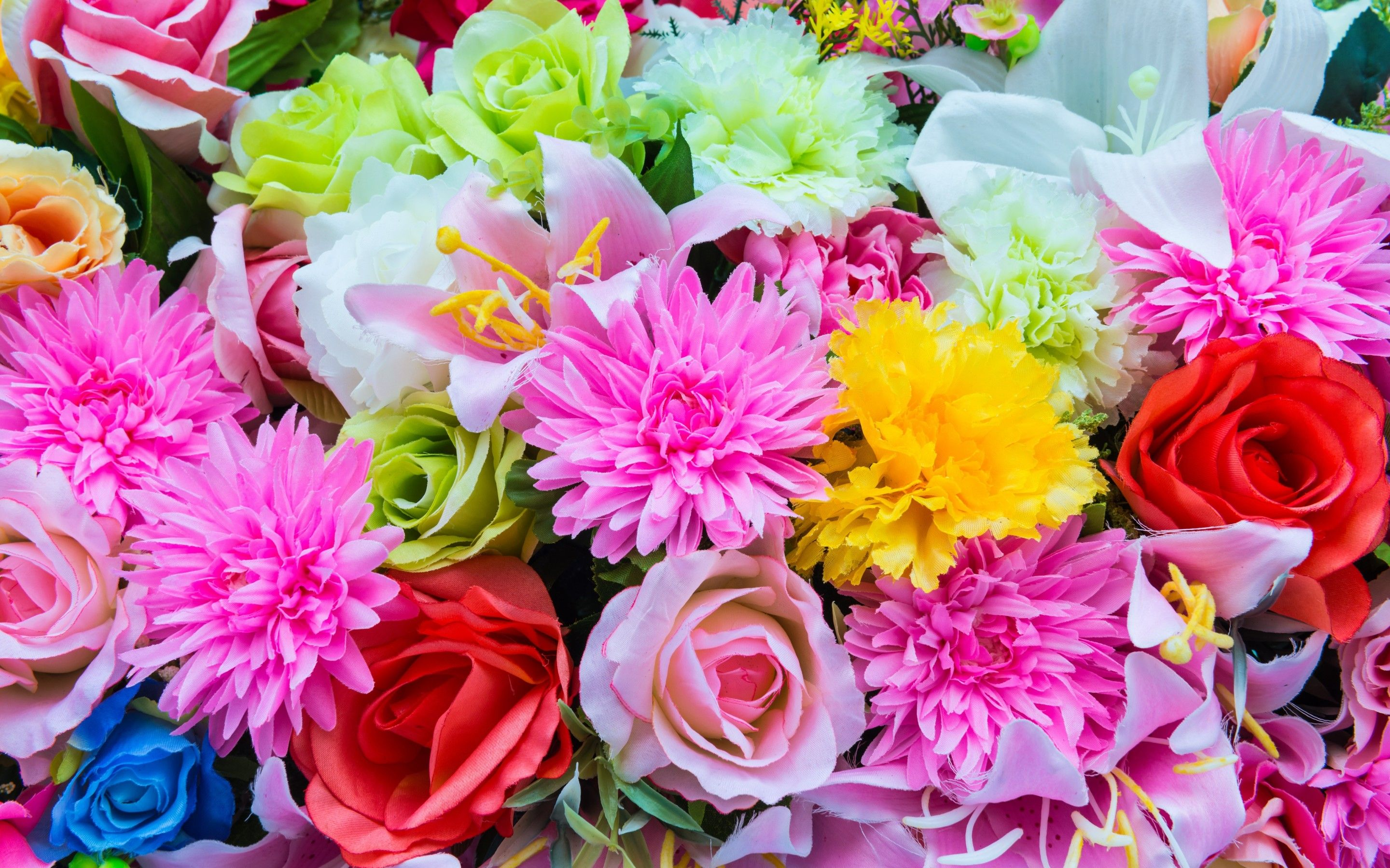 Which Type Of Flower Are You? | Playbuzz, Flowers and ...