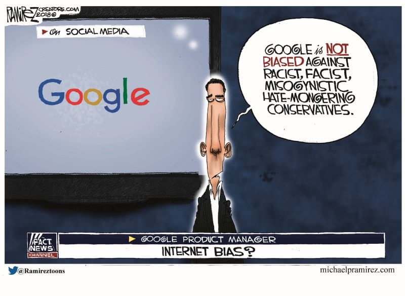 Truth About Bias Against Conservatives on the Internet in One Cartoon