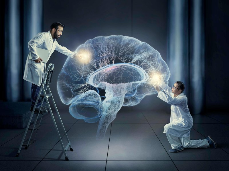 Meet the Two Scientists Who Implanted a False Memory Into ...