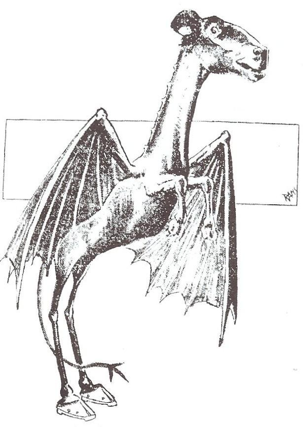 Jersey Devil - Wikipedia