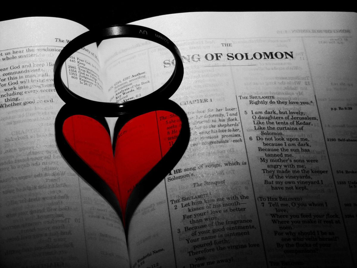Song of Solomon - Wikiquote