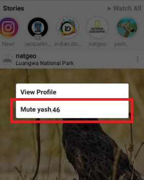 How to mute Instagram story on android phone or tablet