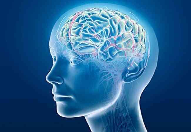 Εγκέφαλος: Τι μάθαμε για αυτόν το 2018 - Healthview