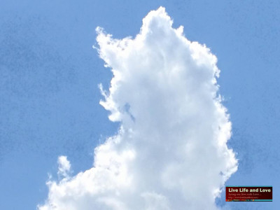 Clouds That Looks Like a Cat   Live Life and Love