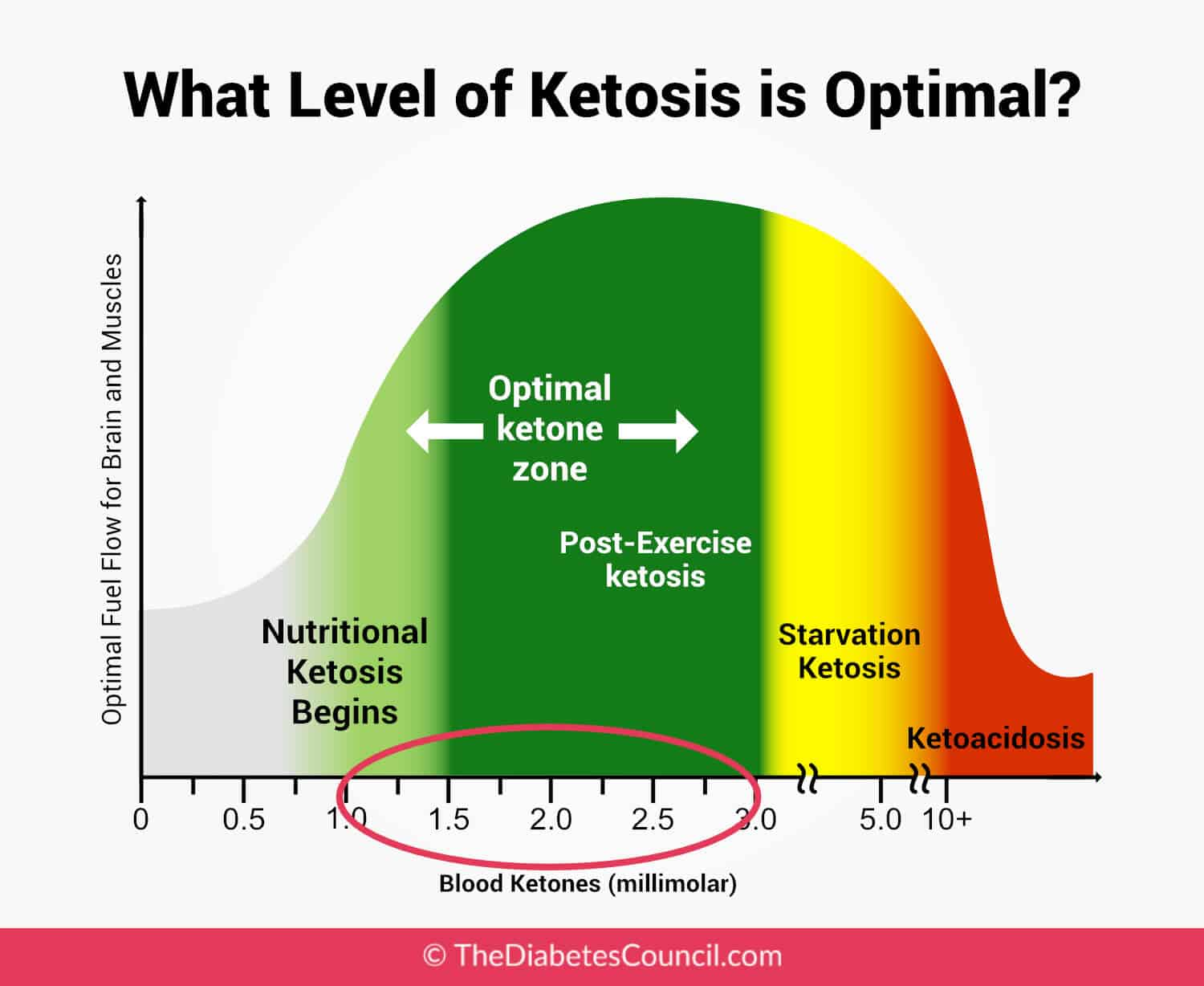 Nutritional Ketosis Ketone Levels | All Articles about ...