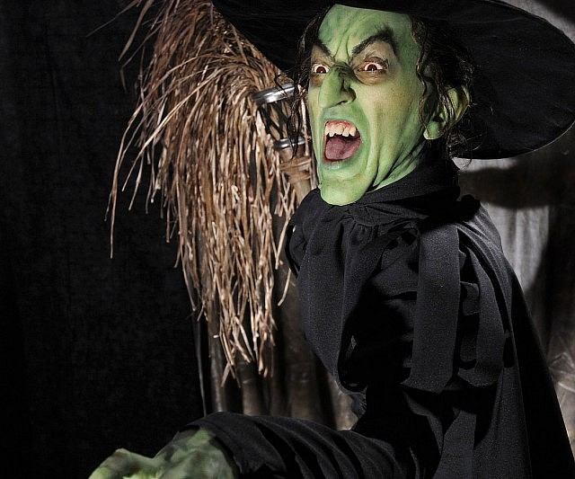 Wicked-Witch-Of-The-West-Costume.jpg&f=1